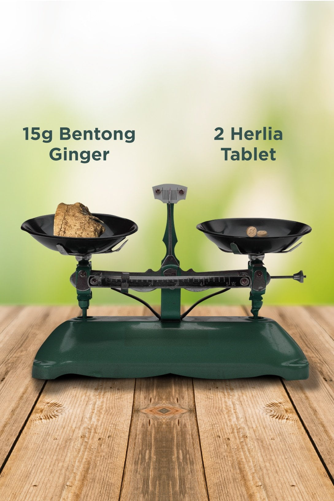 ginger on the table with a weighing mobile